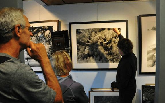 Mark Penney Gallery